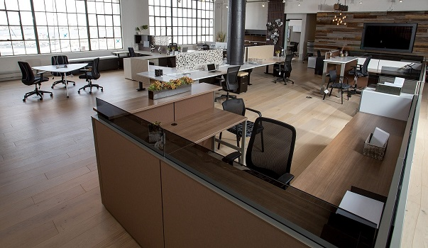 Open Office Furniture Layout